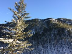 I took this at crystal mountain!