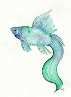 Beta Fish/Teal, Blue, Purple/ Watercolor Print. $14.00, via Etsy.