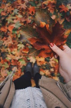 I love the autumn, it is most definitely the best season ever according to me