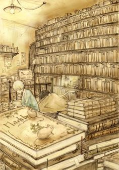 illustration livres books
