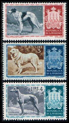 Blue Moon Philatelic Stamp Store - San Marino 376-378 Stamps Dog Stamps EU SM 376to378-1 MH, $0.65 (http://www.bmastamps2.com/stamps/europe/san-marino/san-marino-376-378-stamps-dog-stamps-eu-sm-376to378-1-mh/)