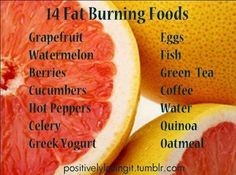 Find Out About Some Available Foods Which Can Burn Fats at High Levels ~ Read Now!