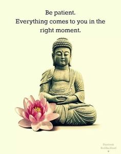 Check out the best Buddha Quotes on life, meditation, spirituality, karma, anger and more to be enlightened you change your life positively. Namaste, Little Buddha, Dalai Lama, The Words, Osho, Inner Peace, Life Quotes, Yoga Quotes, Zen Quotes