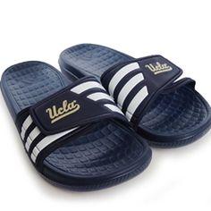 UCLA Slides