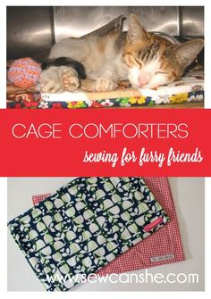 Service learning project: after learning about companion animal homelessness, students create Cage Comforters: Sewing for Furry Friends — SewCanShe | Free Daily Sewing Tutorials