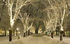 winter parks