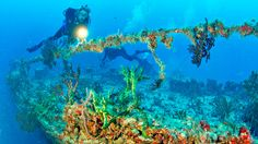 Martin County Artificial Reefs