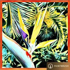 # Sunset of # PaintBrush 🎬39*🎨Radom Effects +a% Square size. @PaintBrush.ai = @DreamScopeApp _offered by -* Lambda Labs _#DreamScope #PaintBrush #PaintBrushApp #DreamScopeApp #PaintBrushEffects _All Is #AfterEffects #FilterEffects #PrismaEffects #EditorEffects by #ArtFilters #PhotoEditing *#Edited_iam to #ARTificialEffects #DigitalArt #NeuralEffects #NeuralArt with #haveFun #Joyance #JoyRide 🎠.