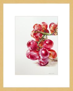 "Daily Paintworks - ""Grape Study"" - Original Fine Art for Sale - © Kara K. Watercolor Fruit, Watercolor Artwork, Watercolor And Ink, Watercolor Flowers, Botanical Art, Botanical Illustration, Watercolor Illustration, Art Aquarelle, Fruit Painting"
