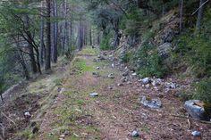 Últimos coletazos al Canal del Cinca antes de tomar el camino a Tella