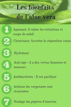 Comment utiliser l'aloe vera en cosmétique ?