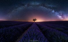 Purple Arch by Fabio Antenore on 500px