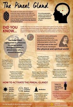 The Pineal Gland and it`s beautiful awakening process