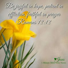 Romans Verse 12 - Be joyful in hope, patient in affliction, faithful in prayer. - Ref Bible Love Notes. Encouraging Verses, Scripture Verses, Bible Verses Quotes, Encouragement Quotes, Bible Scriptures, Faith Quotes, Life Quotes, Prayer For Family, Inspirational Bible Quotes