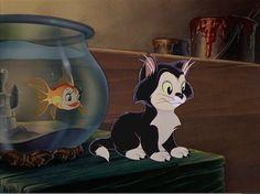 Pinocchio's Cleo and Figaro are the Best Pinocchio's Cleo and Figaro are the Best The post Pinocchio's Cleo and Figaro are the Best appeared first on Paris Disneyland Pictures. Disney Cats, Disney Pixar, Walt Disney, Disney Characters, Pinocchio Disney, Retro Disney, Cute Disney, Vintage Disney, Cruella Deville