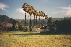 . . . . .  #naturephoto #main_vision #landscape_captures #awesome_earthpix #natureaddict #rsa_rural #awesomeearth #nature_wizards #gottalove_a_ #allnatureshots #instanaturelover #earth_deluxe #nature_brilliance #EarthVisuals #artofvisuals #welivetoexplore #natureaddict #naturediversity #ourplanetdaily #earth_deluxe #instanaturelover #nature_prefection #allnatureshots #unlimitedplanet  #focalmarked