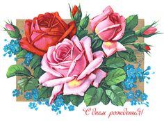 Розы на день рождения