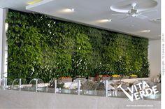 #vertical garden @ Sani resort