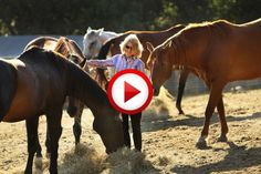 Very intelligent horse #animals, #horses, #videos, #pinsland, https://apps.facebook.com/yangutu