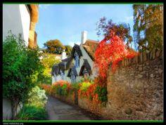Tour to English Countryside