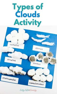 This fun clouds activity will help your early learner be able to identify the clouds easily when they're looking up at the sky. You just need a few simple supplies and you'll be ready in no time at all. Perfect way to study rain and the clouds that make them. #homeschoolscience #weather #clouds #scienceactivities #LivingLifeandLearning Homeschool Science Curriculum, Teaching Science, Science Activities, Science Experiments, Physics Lessons, Earth Science, Place Card Holders, Clouds, Fun