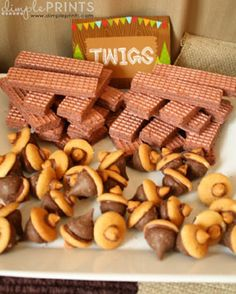 fox and owl desserts | Index of /images/parties/woodland-camping-themed-first-birthday-party