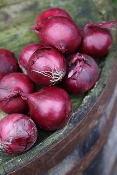 """onions,  from L. unionem (nom. unio), colloquial rustic Roman for """"a kind of onion,"""" also """"pearl,"""" lit. """"one, unity;"""""""