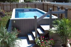 Backyard swimming pools and swim spas