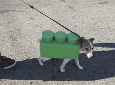 Lego Dog Costume!