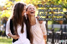 This describes my friendy!