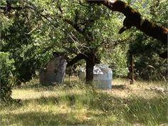 Bridgeville, Humboldt County, California House For Sale - 40 Acres