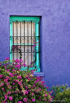 Window - Photograph at BetterPhoto.com