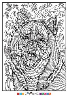 free printable siberian husky coloring page kyro available for download simple and detailed
