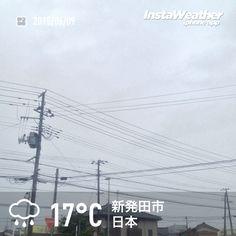 おはようございます! 雨ですがそんなに寒くないです~♪
