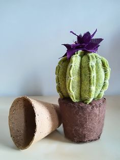 Latest Cactus Decor Ideas For Your Home - Growing cactus indoors is a relatively simple process. Although, most of the cactus plants tolerate neglect, they thrive properly when given good care. Felt Succulents, Artificial Succulents, Planting Succulents, Cactus Craft, Cactus Decor, Cactus Plants, Cactus Flower, Cactus Y Suculentas, Felt Flowers