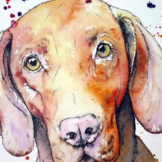 Watercolor Portrait Painting, Pen And Watercolor, Portrait Paintings, Watercolor Illustration, Pet Portraits, Doodle Dog Breeds, Very Scary, Pen Art, Friends In Love