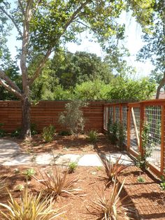 fence & gate by Wooley Landscapes