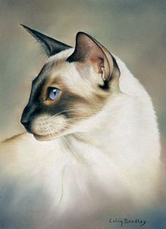 When drawing Animal subjects in pastel pencils, the neck is a difficult area to leave the picture at because the animal looks 'decapitated'. If you don't put a background on you have a bit more of problem because you have to have