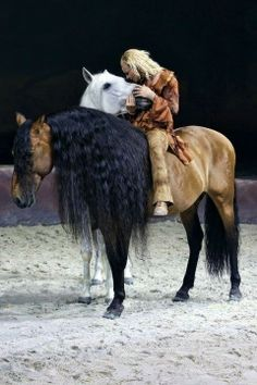 Gorgeous horses! And I like her pants!