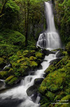 Lower Kentucky Falls. Take this hike if staying near Eugene, Florence, or Reedsport