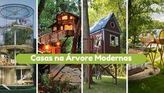 10 Ideias de Mini Jardins com Suculentas