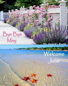 Welcome June! ❤️
