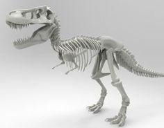 Tyrannosaurus Rex Skeleton 3D print model Tyrannosaurus Rex Skeleton, 3d Printable Models, 3d Printing, Animation, Prints, Art, Ideas, Impression 3d, Art Background