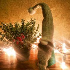 My Christmas Gnome 🎅🏻🎄