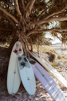 McTavish X Ming Nomchong Artist Collab Boards Beach Aesthetic, Summer Aesthetic, Summer Surf, Summer Vibes, Photo Wall Collage, Picture Wall, Aesthetic Backgrounds, Aesthetic Wallpapers, Hawaii Surf