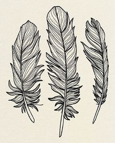 Urban Threads: Unique and Awesome Embroidery Designs Feather Drawing, Feather Art, Feather Design, Bird Feathers, Feather Stencil, Feather Pattern, Embroidery Designs, Schrift Tattoos, Urban Threads