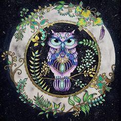 Finally Done Johannabasford Enchantedforest Florestaencantada Coloring Secrets Jardimsecreto Secretgarden