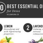 10 Best: Essential Oils for Detox