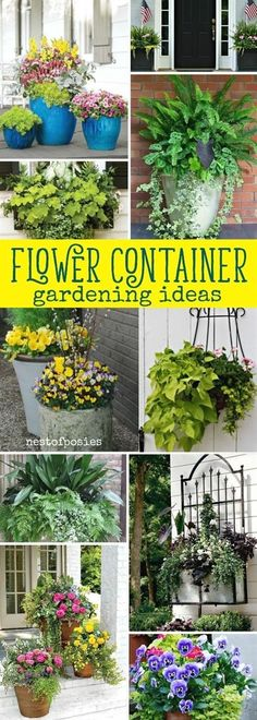Flower Container Gardening Ideas that are beautiful and lush. Easy to grow flower planters that will inspire your home's flower container gardening ideas.  #containergardening