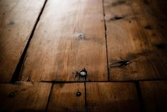 Farmhouse Wood Flooring, way darker than the color palette I'm leaning towards, but they sure are beautiful.